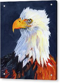 American Bald Eagle Acrylic Print by Mike Lester