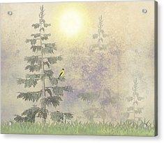 American Goldfinch Morning Mist  Acrylic Print by David Dehner
