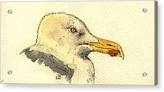 American Herring Gull Acrylic Print by Juan  Bosco