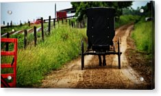 Amish Buggy On Dirt Road Acrylic Print by Dan Sproul