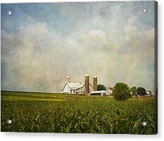 Amish Farmland Acrylic Print by Kim Hojnacki