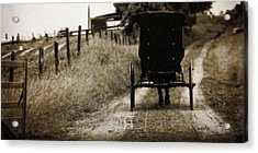 Amish Horse And Buggy Acrylic Print by Dan Sproul