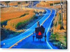 Amish Horse And Buggy In Autumn Acrylic Print by Dan Sproul