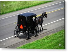 Amish Horse And Buggy In Ohio Acrylic Print by Dan Sproul