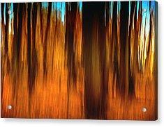An Impressionistic In-camera Blur Acrylic Print by Rona Schwarz