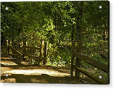 An Invitation To Walk In The Light Acrylic Print by Larry Darnell