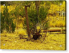 An Old Grass Cutter In Lincoln City New Mexico Acrylic Print by Jeff Swan