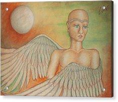 Angel Boy Acrylic Print by Claudia Cox
