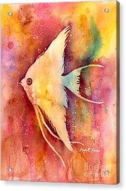 Angelfish II Acrylic Print by Hailey E Herrera