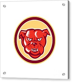 Angry Bulldog Mongrel Head Circle Retro Acrylic Print by Aloysius Patrimonio