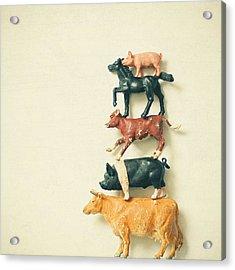Animal Antics Acrylic Print by Cassia Beck