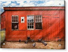 Animal - Bird - Bird Watching Acrylic Print by Mike Savad
