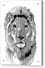 Animal Prints - Proud Lion - By Sharon Cummings Acrylic Print by Sharon Cummings