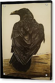 Animals Acrylic Print by Per-erik Sjogren