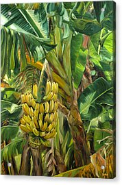 Annie's Bananas Acrylic Print by Stacy Vosberg