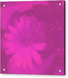 Another Color Suprise Acrylic Print by Pepita Selles
