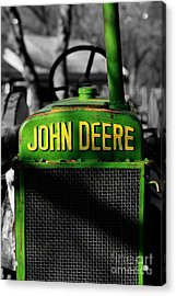 Another Deere Acrylic Print by Cheryl Young