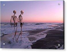 Anthropology Shared Similarities  Acrylic Print by Betsy Knapp