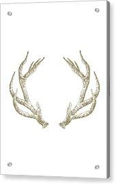 Antlers Acrylic Print by Randoms Print