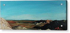 Anza - Borrego Desert Acrylic Print by Joseph Demaree