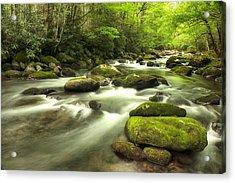 Appalachian Spring Stream Acrylic Print by Phyllis Peterson