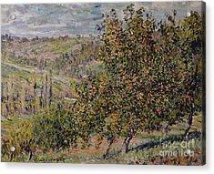 Apple Blossom Acrylic Print by Claude Monet