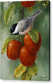 Apple Chickadee Greeting Card 3 Acrylic Print by Crista Forest