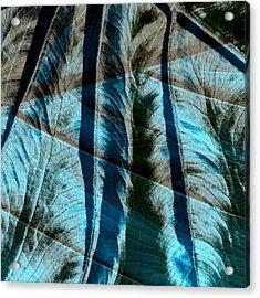 Aqua And Brown Leaf Montage Acrylic Print by Bonnie Bruno