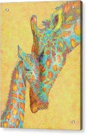 Aqua And Orange Giraffes Acrylic Print by Jane Schnetlage