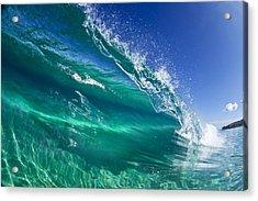 Aqua Blade Acrylic Print by Sean Davey