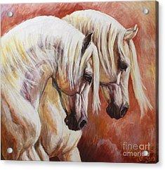 Arab Horses Acrylic Print by Silvana Gabudean