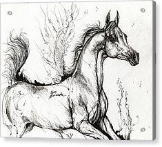 Arabian Horse Drawing 1 Acrylic Print by Angel  Tarantella