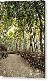 Arashiyama Kyoto Japan Acrylic Print by Colin and Linda McKie