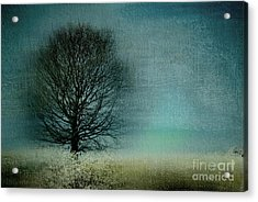 Arbrensens - V63 Acrylic Print by Variance Collections