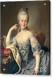 Archduchess Marie Antoinette Habsburg-lotharingen Acrylic Print by Martin II Mytens