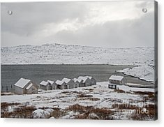 Arctic Winter Acrylic Print by Gry Thunes
