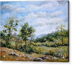 Arkansas Summer Acrylic Print by Virginia Potter