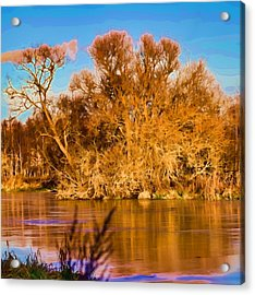 Artistic Big Tree Colored Coloured #orange By Sun On January 2 2015 Besides The Creek Of Enkoping Acrylic Print by Leif Sohlman