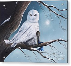 White Snow Owl Painting Acrylic Print by Shawna Erback