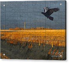 As The Crow Flies-fall Fields Acrylic Print by Judy Wood