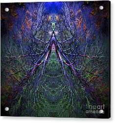 Ascension Acrylic Print by Tim Gainey