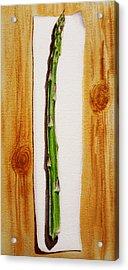 Asparagus Tasty Botanical Study Acrylic Print by Irina Sztukowski
