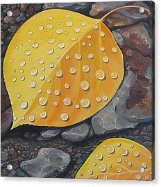 Aspen Rain Acrylic Print by Hunter Jay