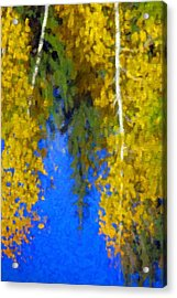 Aspen Reflection Acrylic Print by Pat Now