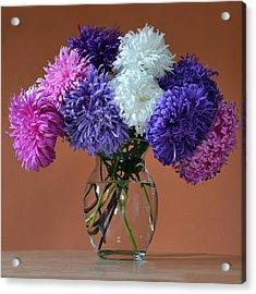 Astonishing Asters. Acrylic Print by Terence Davis
