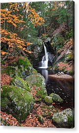 At A Distance Acrylic Print by Bill Wakeley