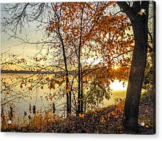 At Last Light Acrylic Print by Richard Chasin