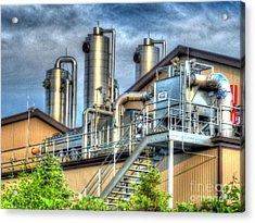 At The Landfill Acrylic Print by MJ Olsen