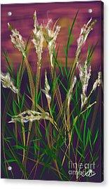 August Breath Acrylic Print by Judy Via-Wolff