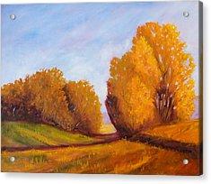 Autumn Afternoon Acrylic Print by Nancy Merkle